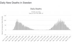 Screenshot_2021-03-02 Sweden Coronavirus 669,113 Cases and 12,882 Deaths - Worldometer.png