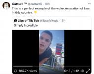 Screenshot_2021-10-04 Catturd ™ ( catturd2) Twitter.png